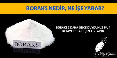 Boraks nedir